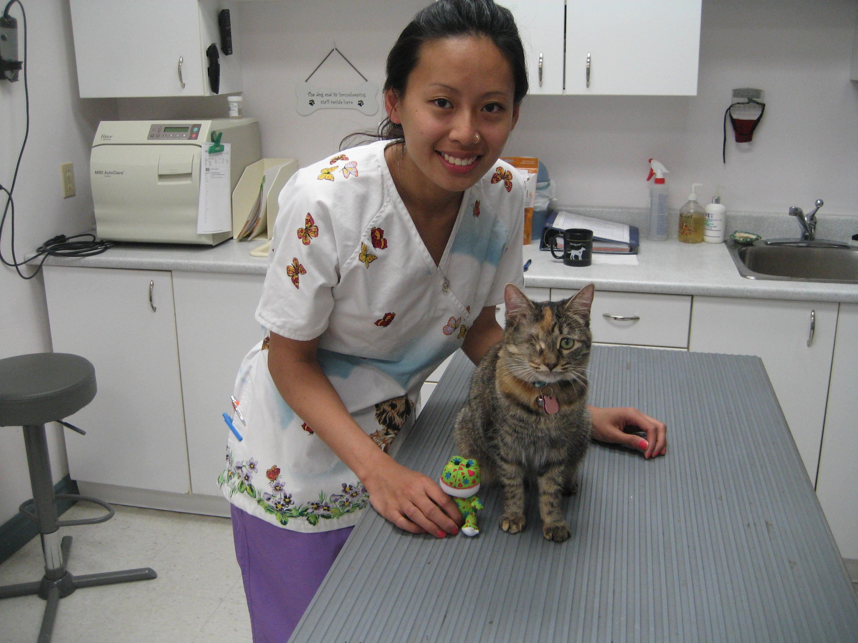 Kenzi with Vet Tech in office