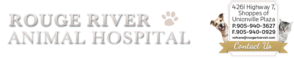 Logo for Veterinarians Unionville, Ontario | Rouge River Animal Hospital